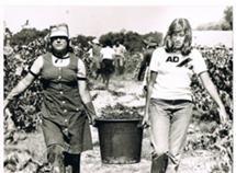 Na campanha da AD em Setúbal, em 1981